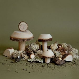 wooden toy mushrooms for small world play